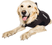 Jacketz Medical Body Suit hond - Jacketz Medical Body Suit hond S