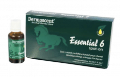 Dermoscent Essential 6 Spot-On Paard